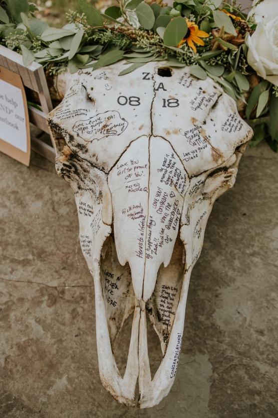 DIY buffalo Skull