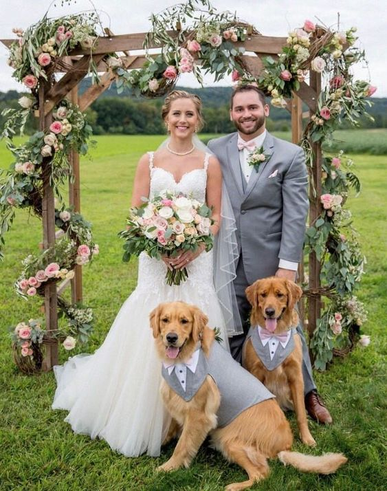 dog on your wedding
